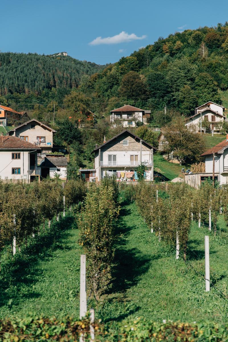 Bosnia_0088.jpg