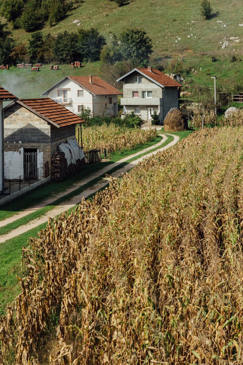 Bosnia_0204.jpg