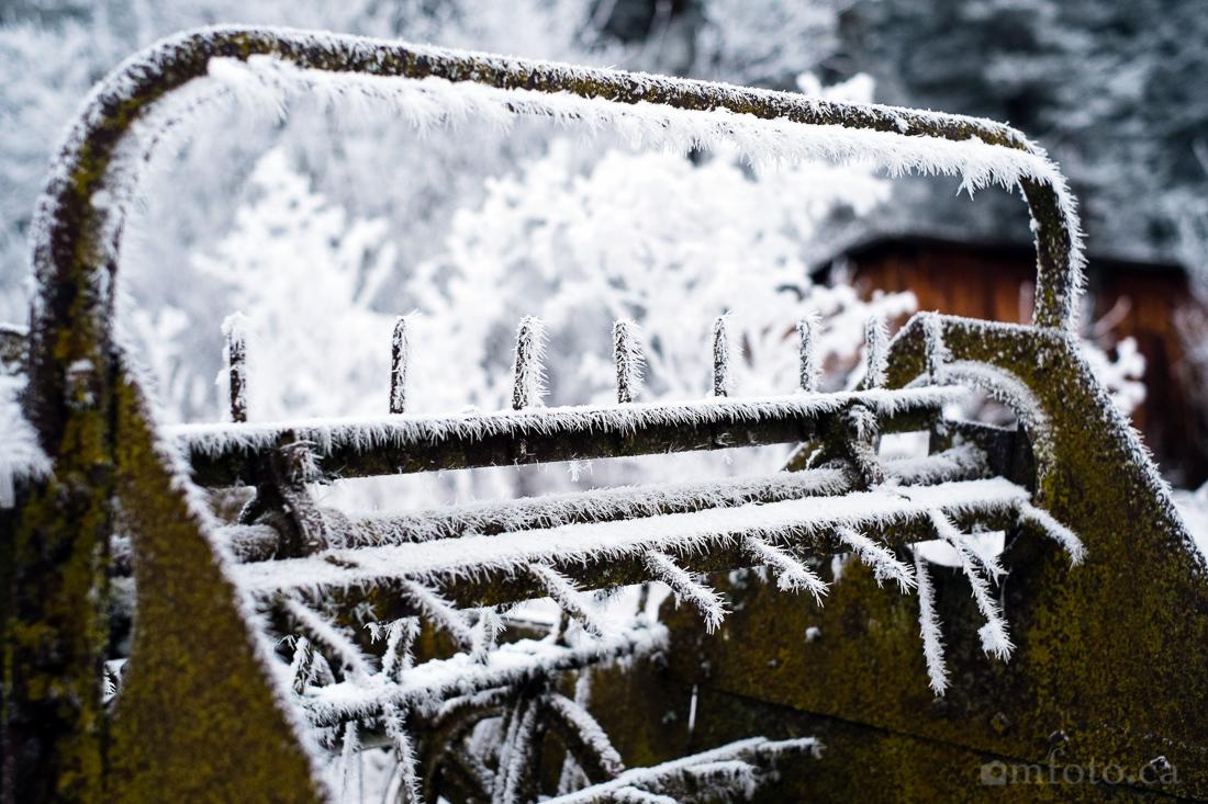 hoar_frost_old_barn--2.jpg
