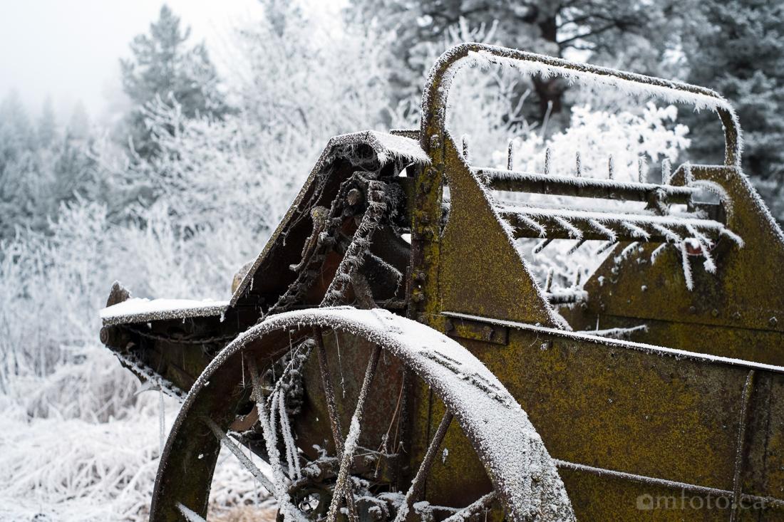 hoar_frost_old_barn--3.jpg