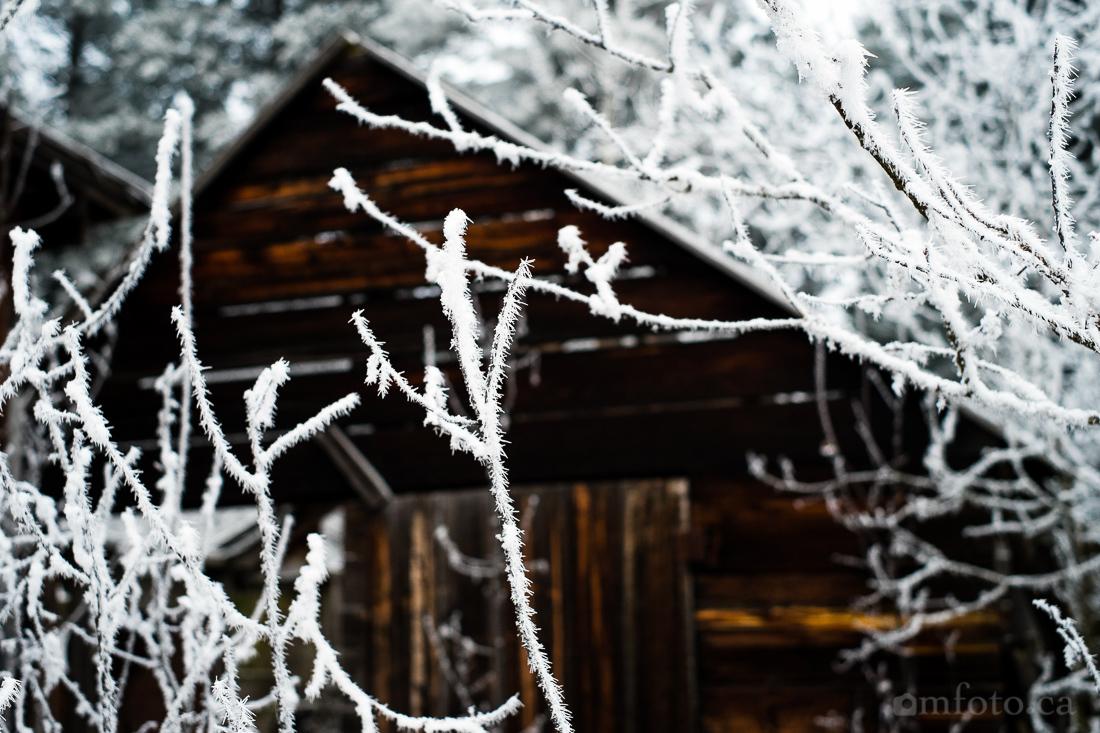 hoar_frost_old_barn--8.jpg