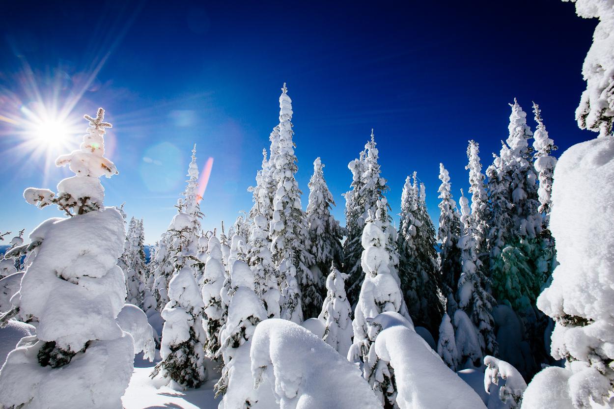 silverstar_snow_ghosts-5907.jpg