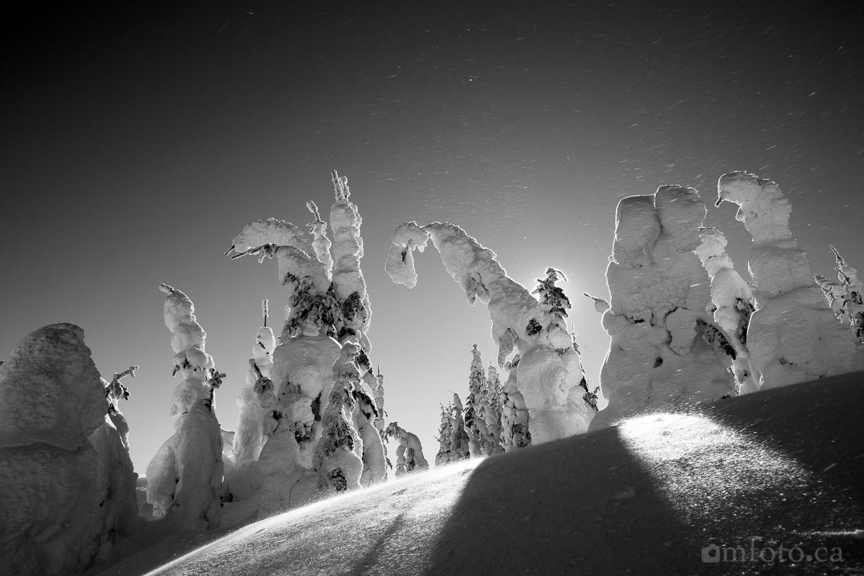 silverstar_snow_ghosts-5933.jpg