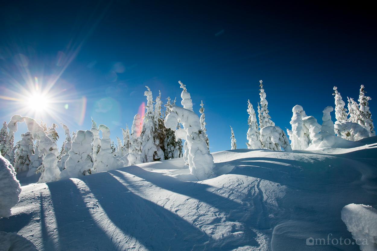 silverstar_snow_ghosts-5922.jpg