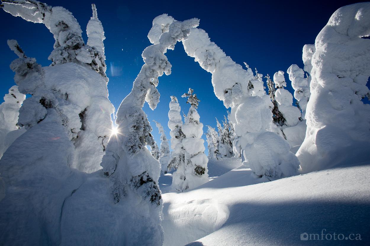 silverstar_snow_ghosts-5939.jpg