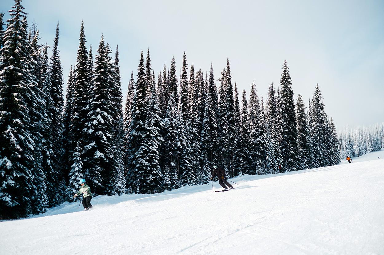 ski-xpro-nd-1081_1250.jpg
