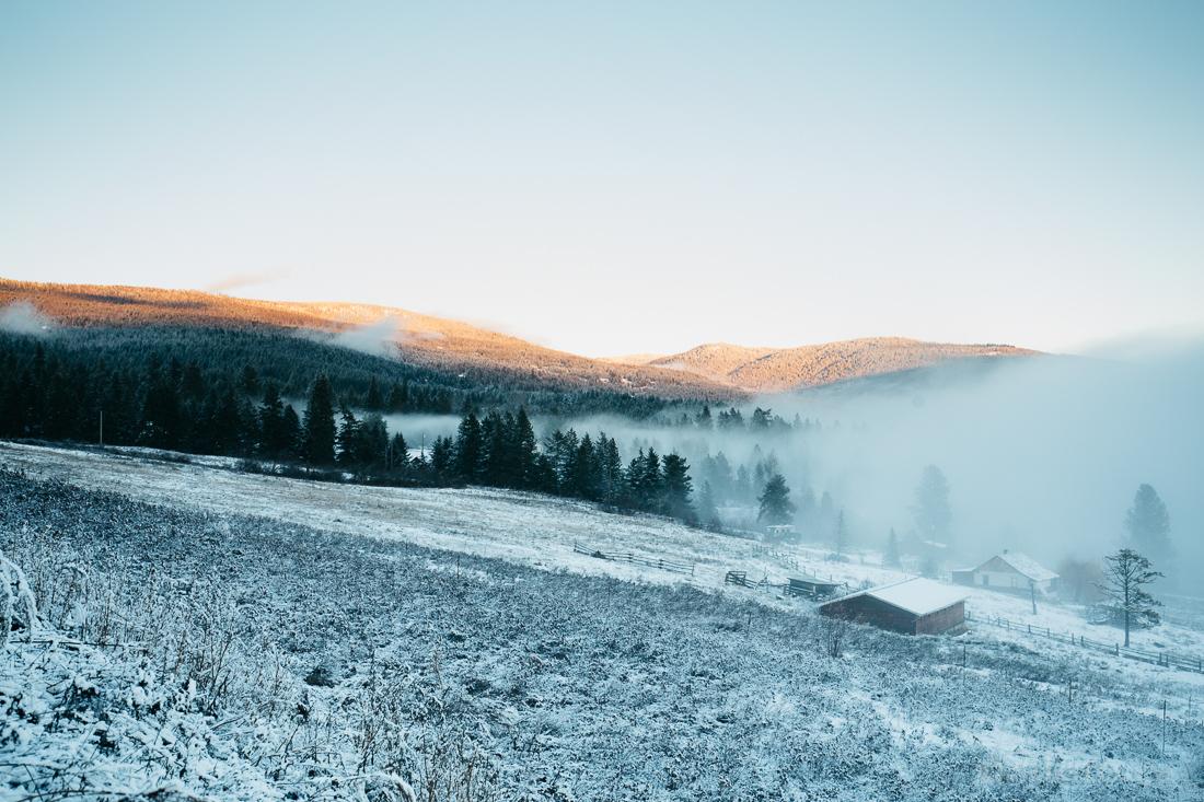2015-winter-8900.jpg
