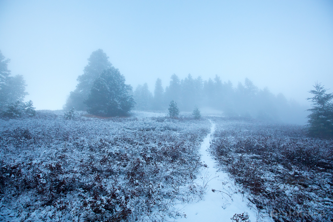2015-winter-8936.jpg