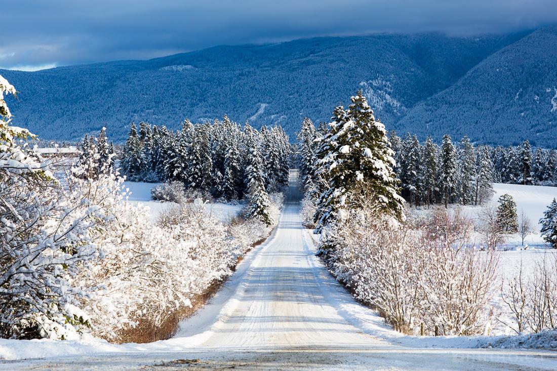 2015-winter-9028.jpg