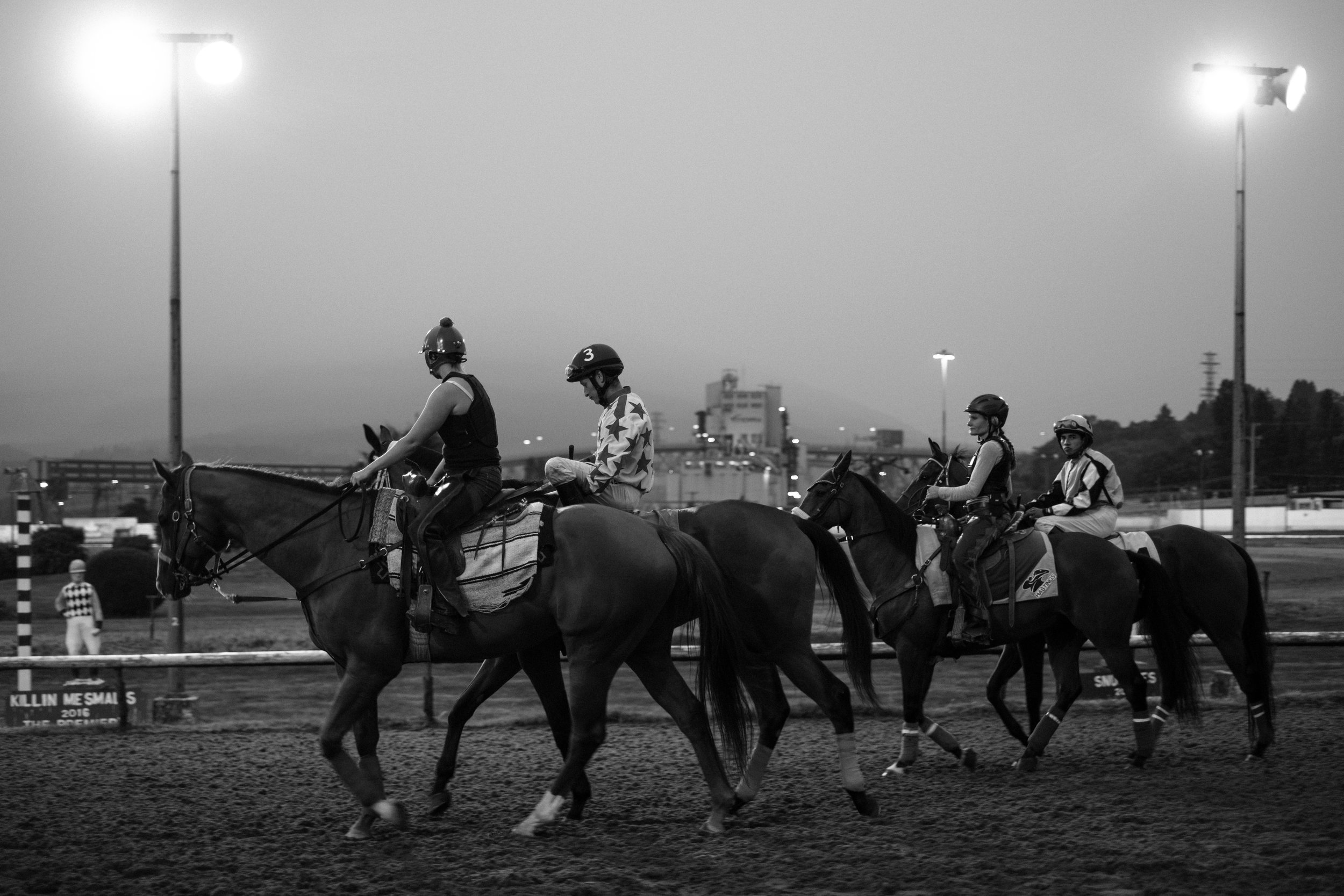 hastings_racecourse-0738.jpg