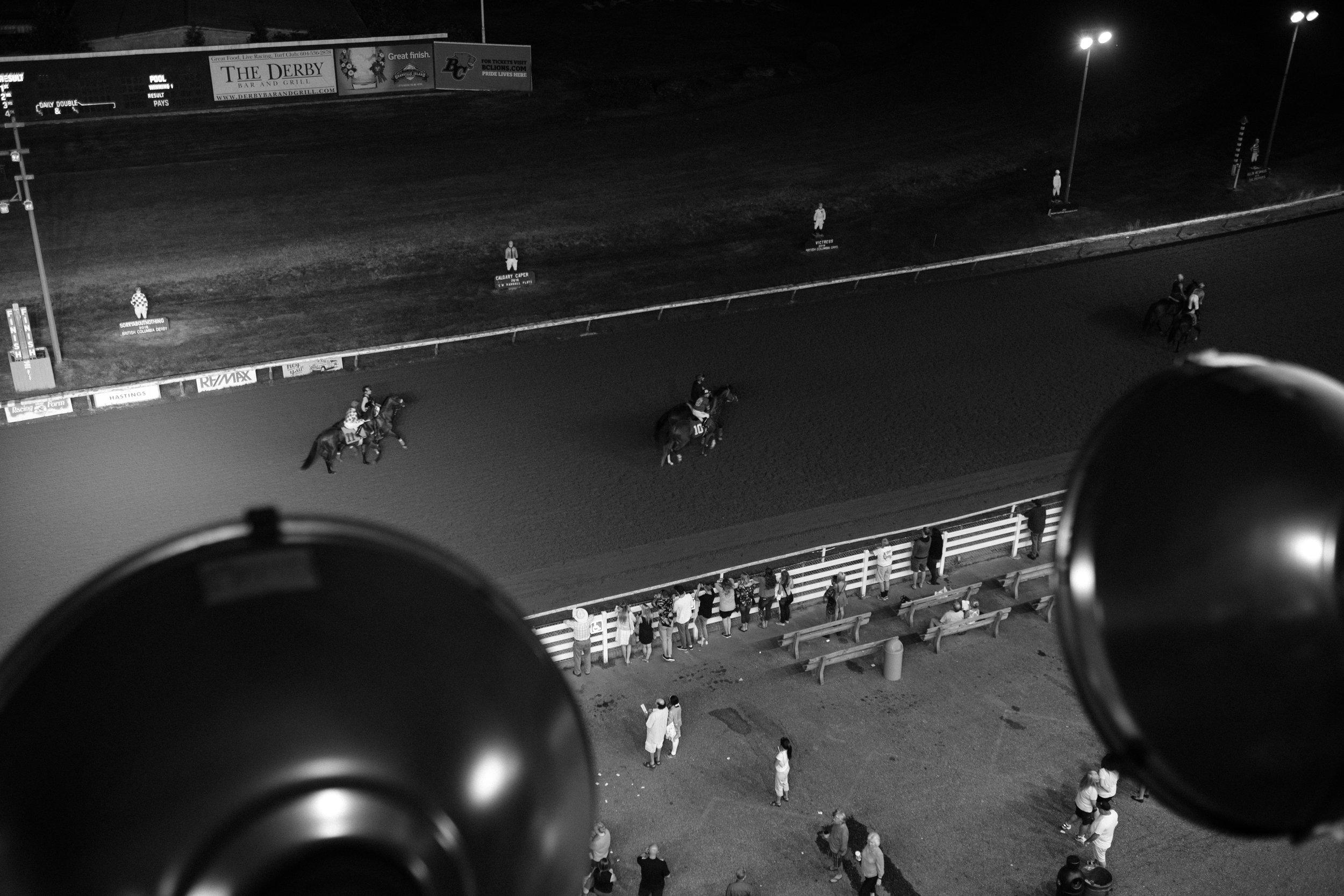 hastings_racecourse-0779.jpg