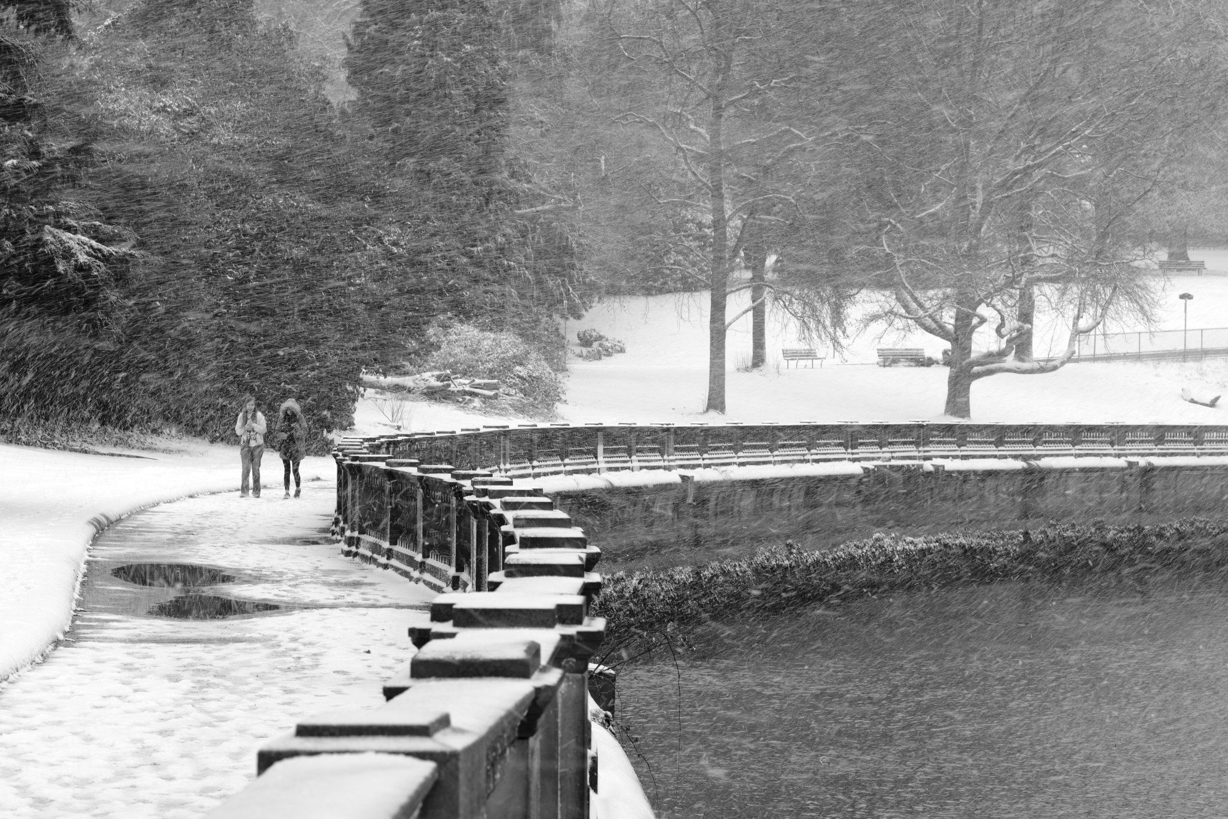 DSCF0062vancouver_snow_day.jpg