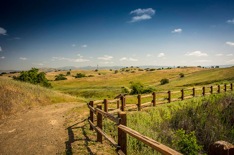 The  Committee for Green Foothills  protects open spaces, photo by Mark Grzan