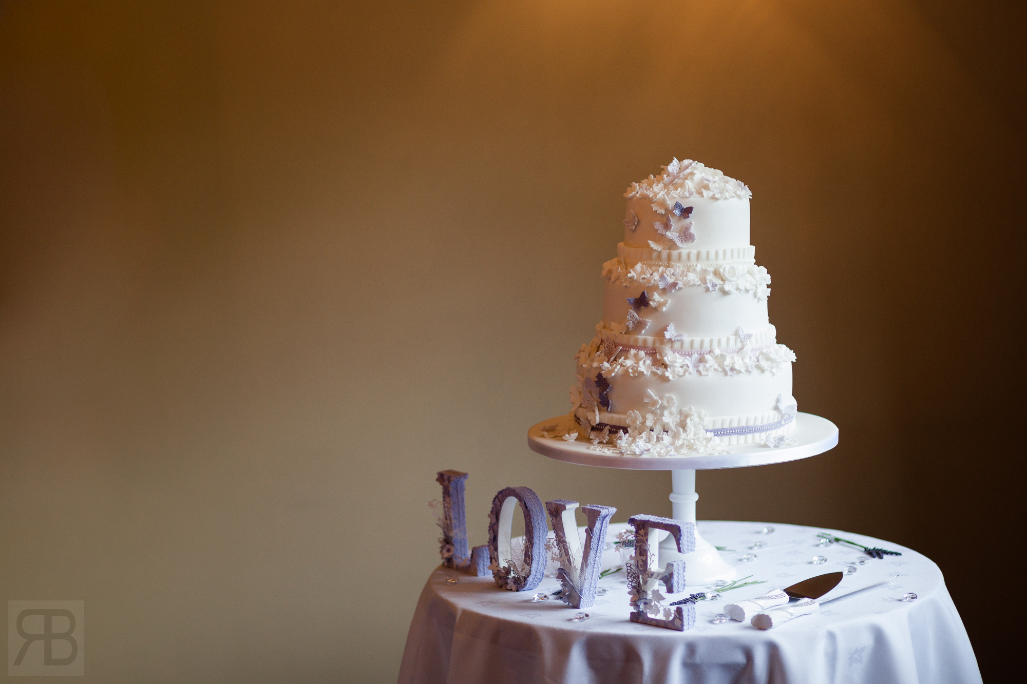 110715_LisaCraigJohnson_Wedding_5433025_WebWM.jpg