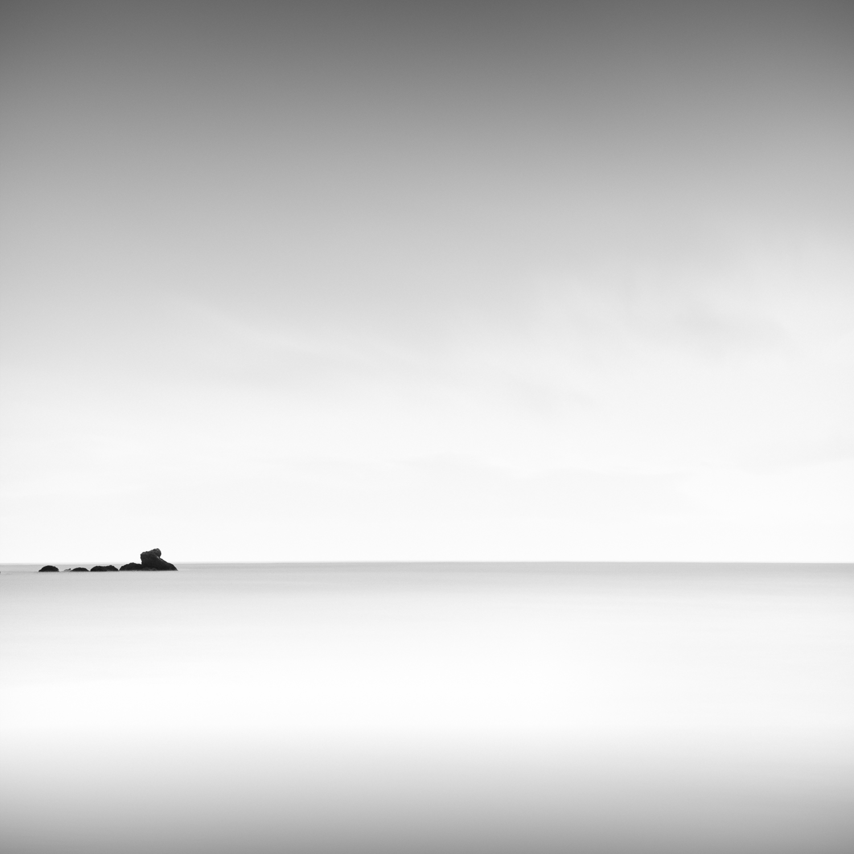 SEA MONSTER, BOWENTOWN, 2013