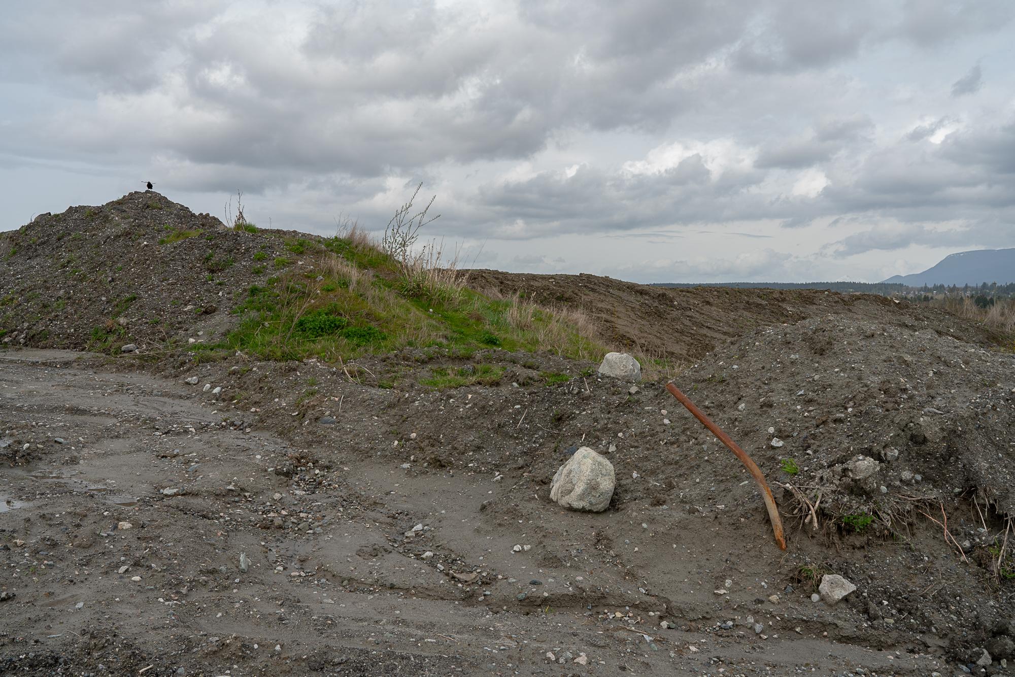 Jim-Roche-photo-Island-0030.jpg