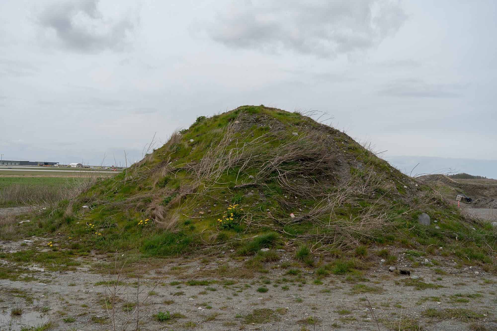 Jim-Roche-photo-Island-0050.jpg