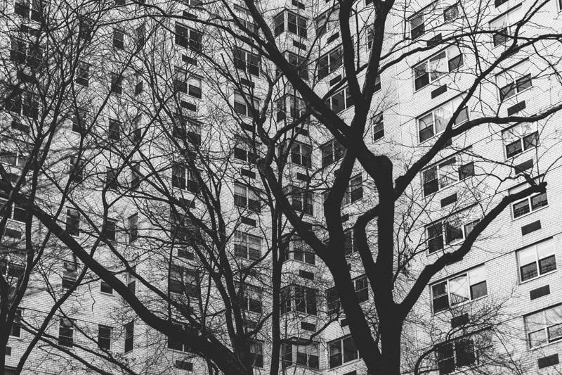 Trade XLIX | New York City | Taylor Jacobson