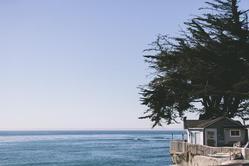 Trade XLI | Santa Cruz | Lisa Fenton