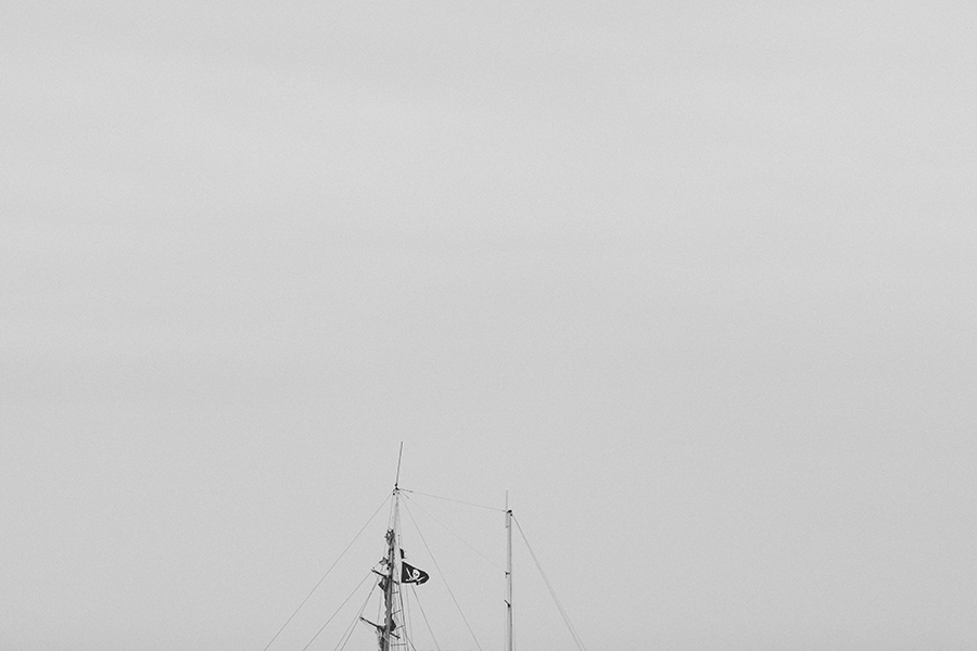 Trade XCVIII | Stradbroke Island | Morgan Jenkins