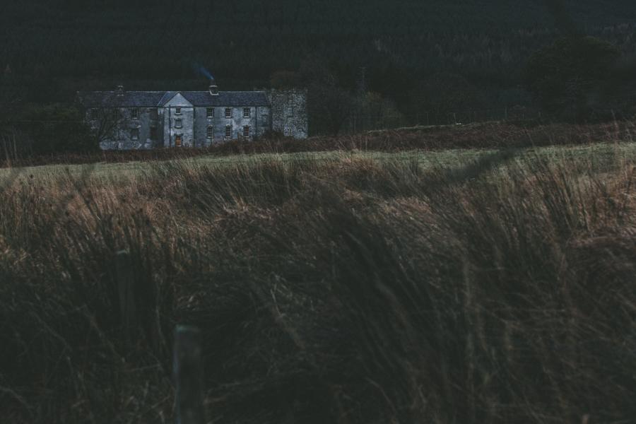 Trade CXXXVI |  Ireland  | Rory Mcardle
