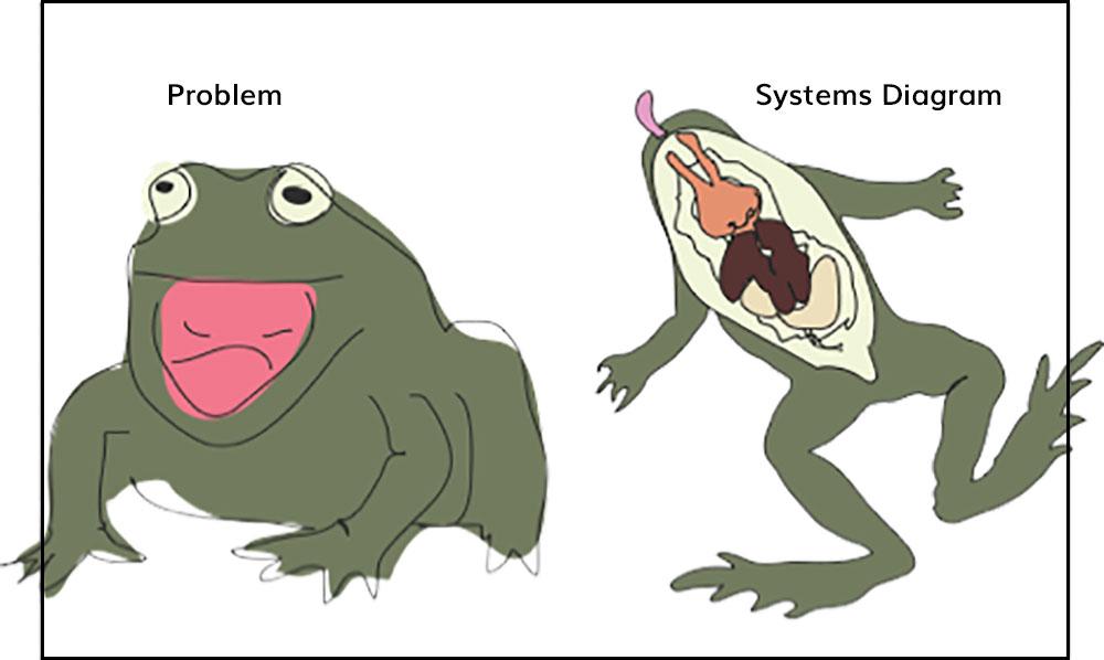 blog-brent-frogs.jpg