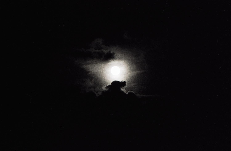 The Dog in the Clouds, Kathmandu, 1995 by Brian Beker. Leica M6, 50 mm Summicron, Kodak Tri-X at 1600 ASA.