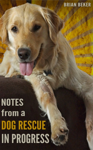 Kindle cover for Notes from a Dog Rescue in Progress