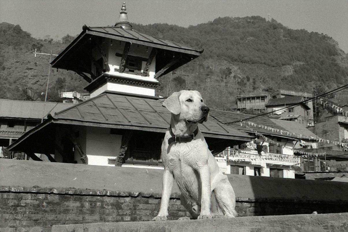 Orville in Nepal at just over a year old. This might be in Gurkha, though I'm not sure.