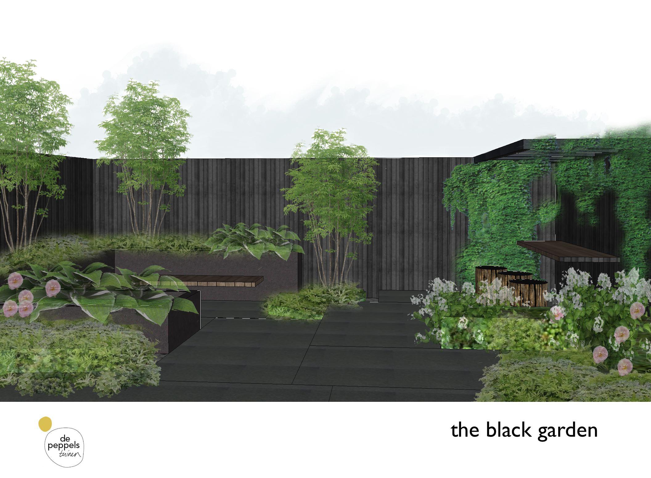 tuinontwerp zwarte patiotuin Amsterdam