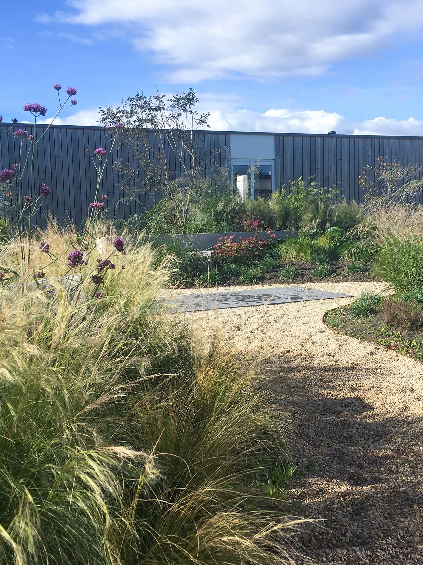 Tuinontwerp wilde tuin
