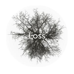 LOSS.png