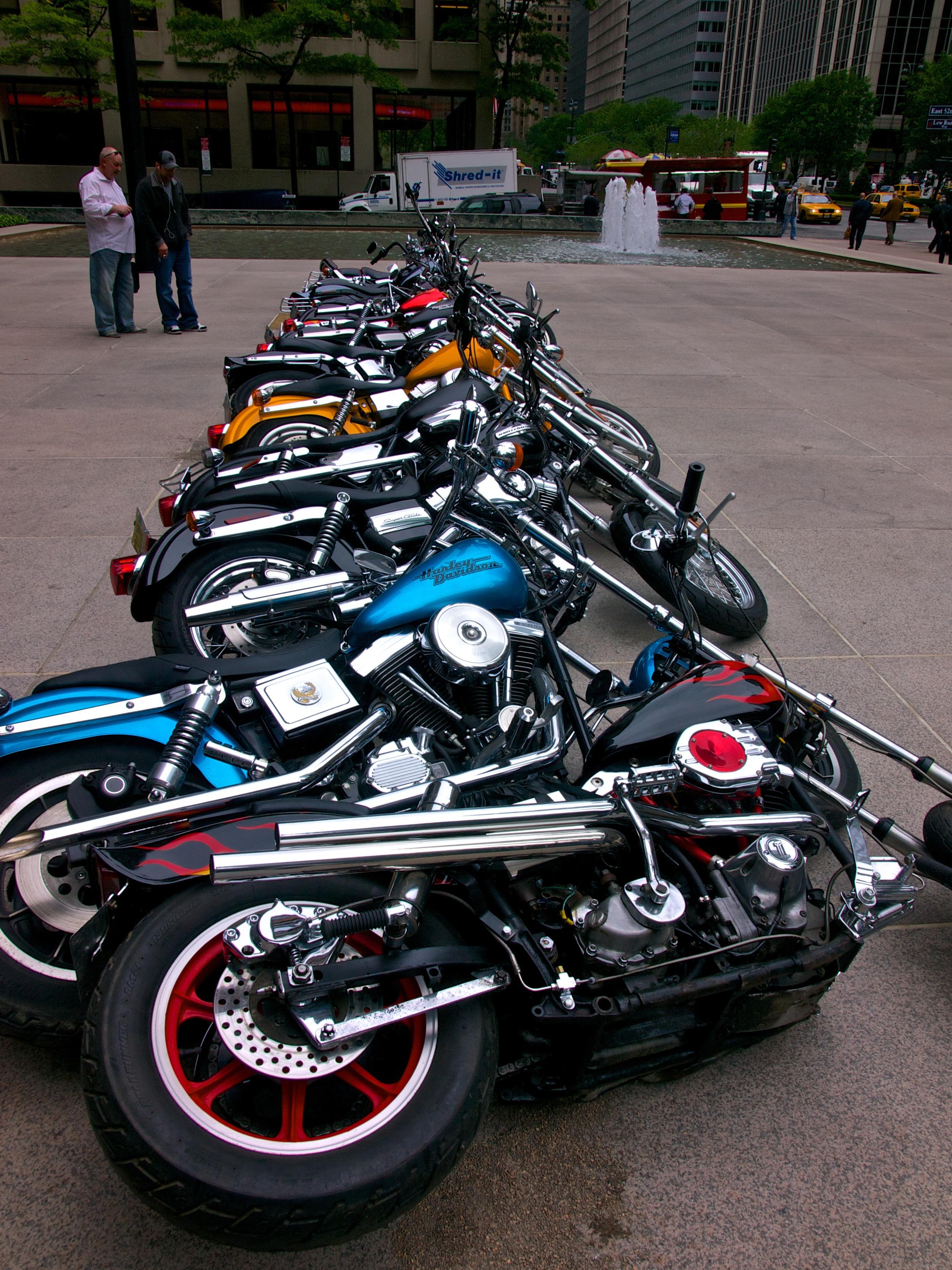Harley Dominoes.jpg