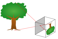 Principle of a pinhole fanny camera: light rays from an object pass through a small hole to form an inverted image. - courtesyWikipedia