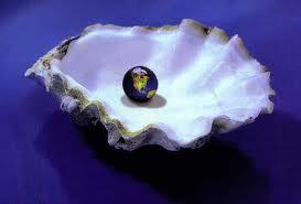 pearl in oyster.jpg