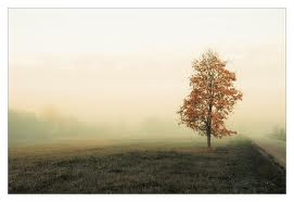 emptiness.jpg
