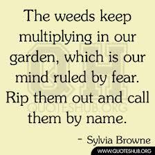 weed fear.jpg