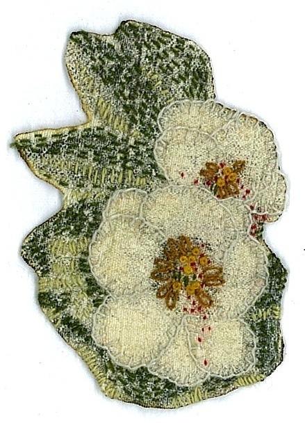 anemone 2012