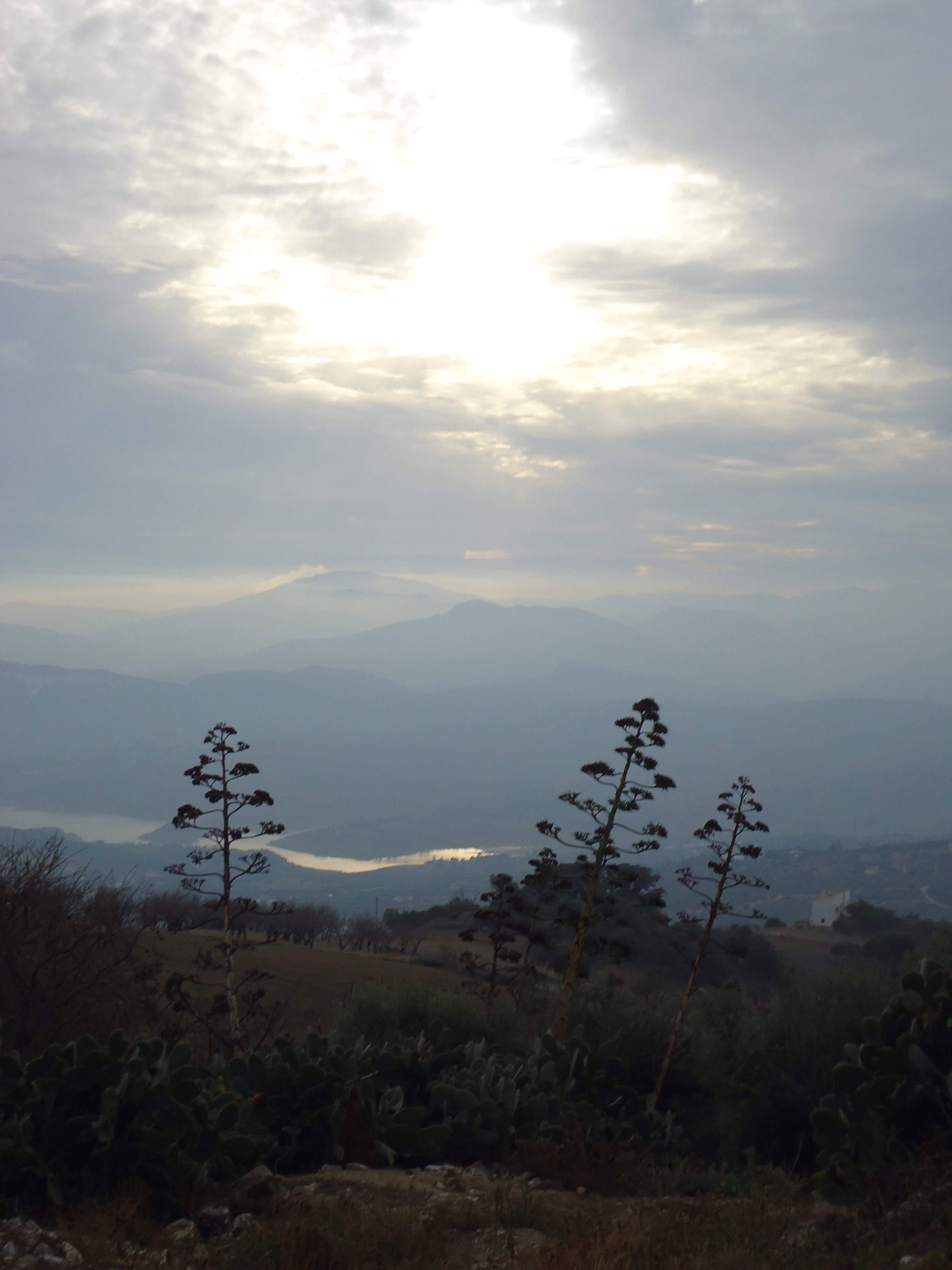 Early evening and looking towards Lake Vinuela....
