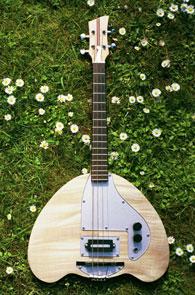 Electric Tenor Banjo