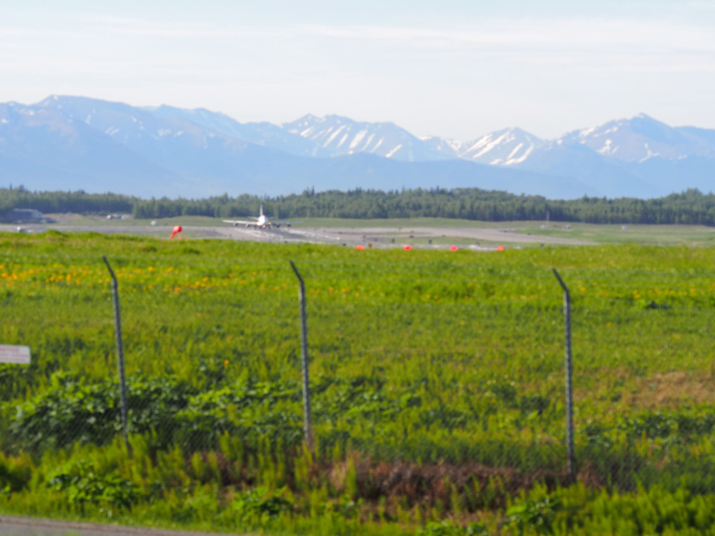 The trail goes right by Anchorage airport, and you can see the planes take off right above your head!