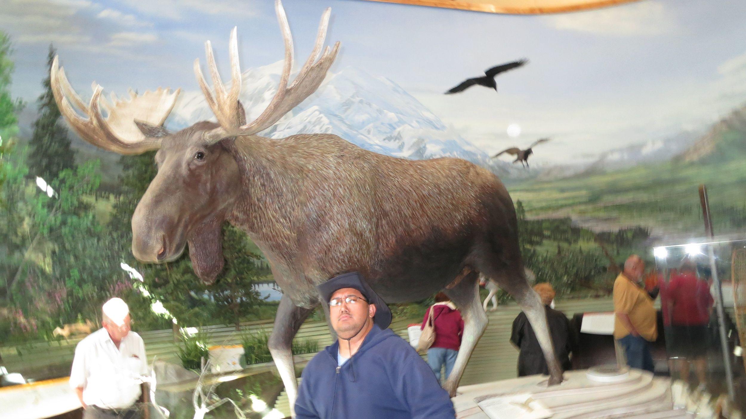 Mike and fake moose