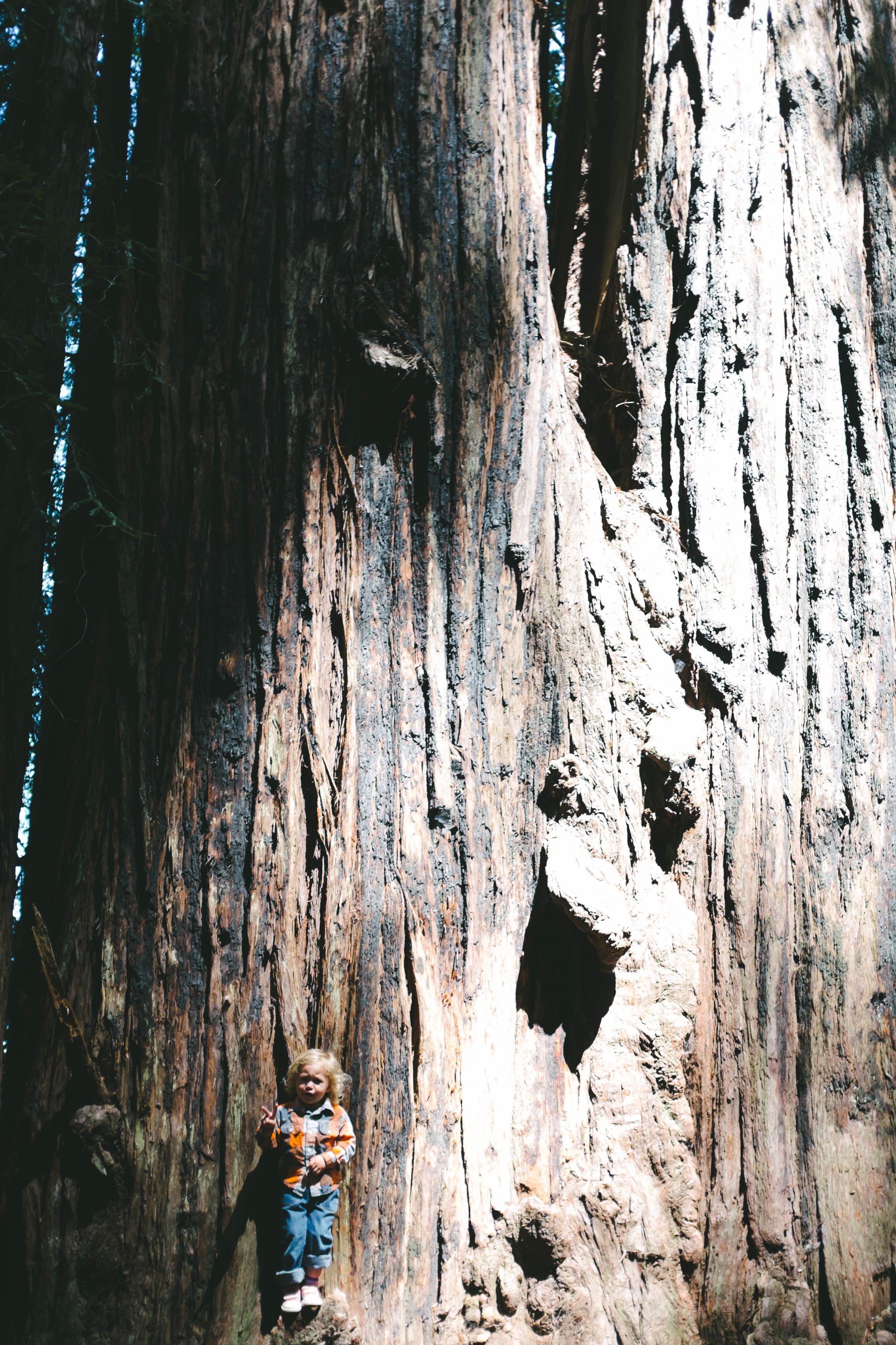 Hendy Woods Scout Folks Web-36.jpg