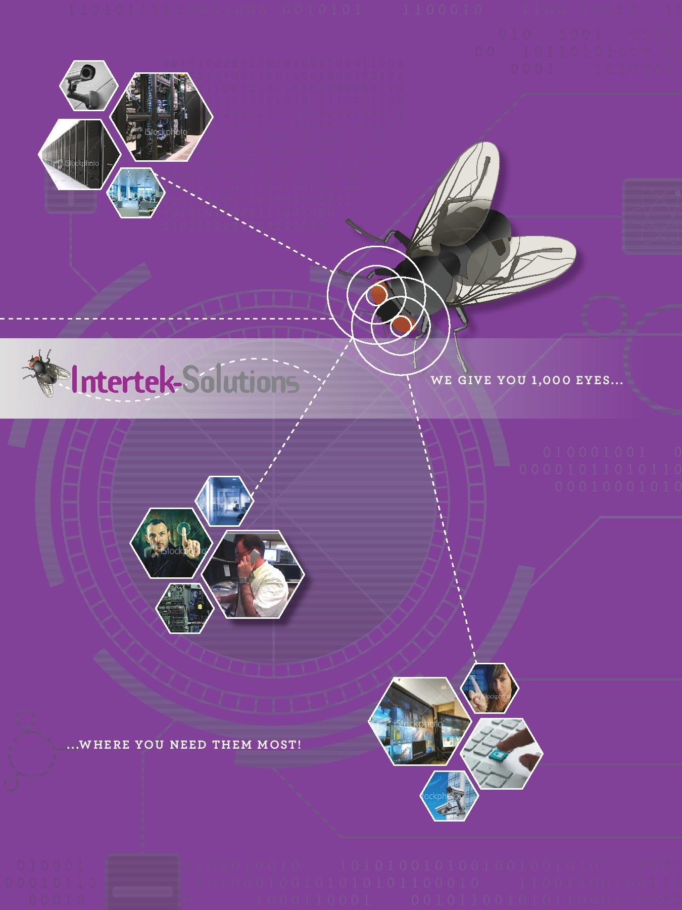 Intertek Fly Brochure page1.jpg