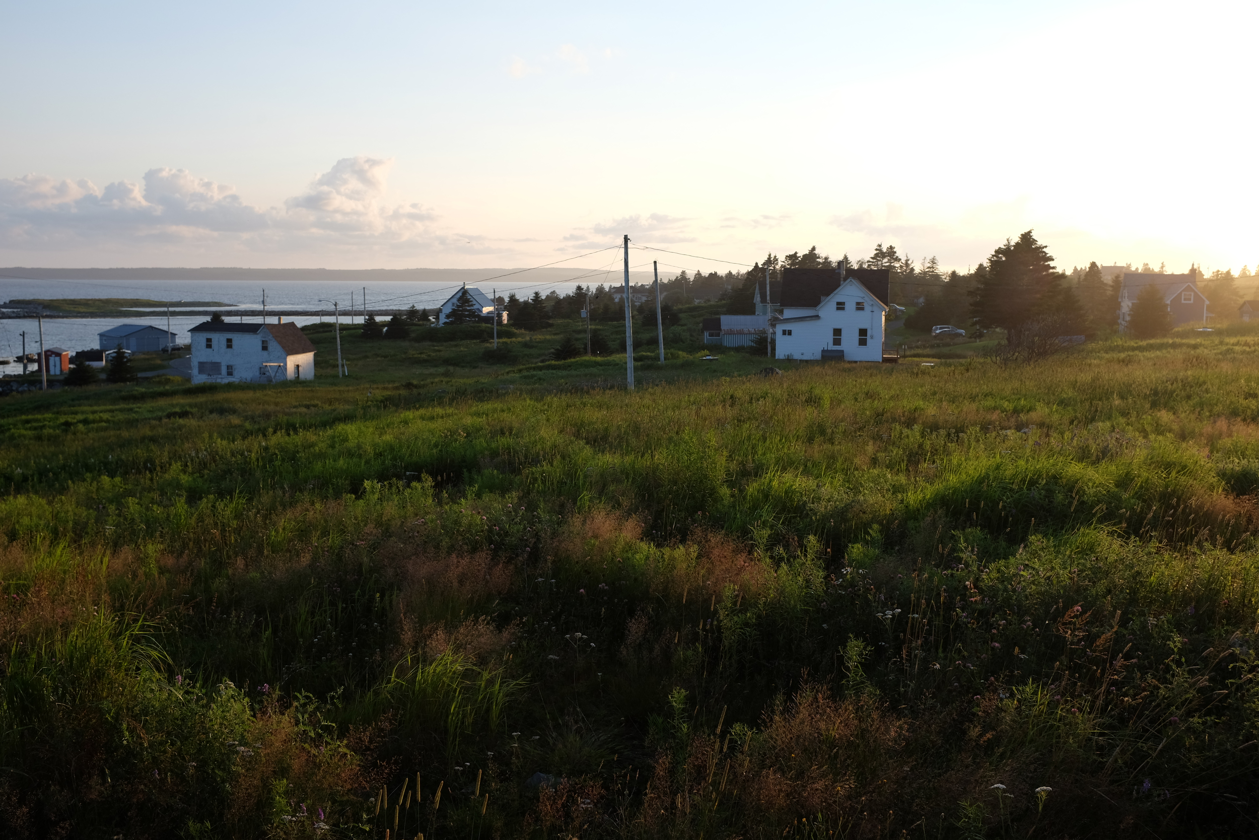 evening sun in Guysborough County, NS