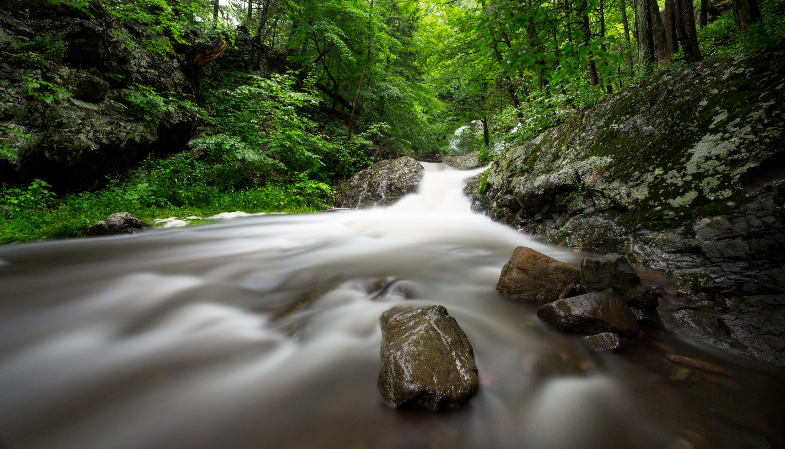 Westfield Waterfalls-1.jpg