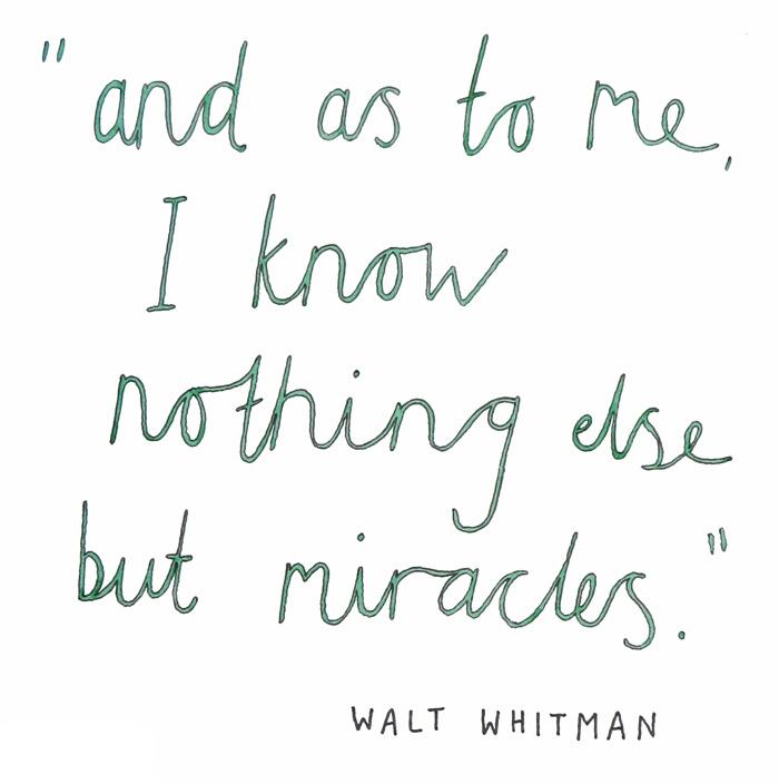 12-whitman-web.jpg