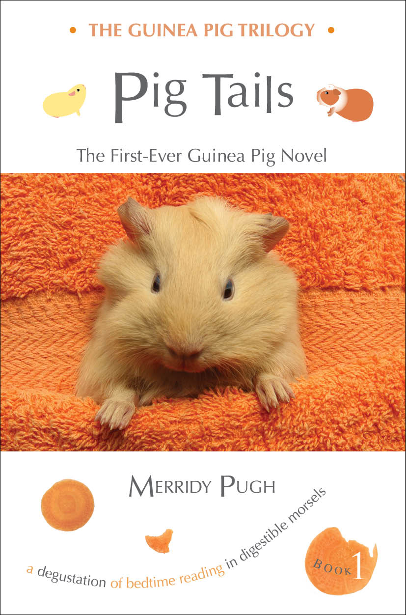 Pig Tails front cover sample.jpg