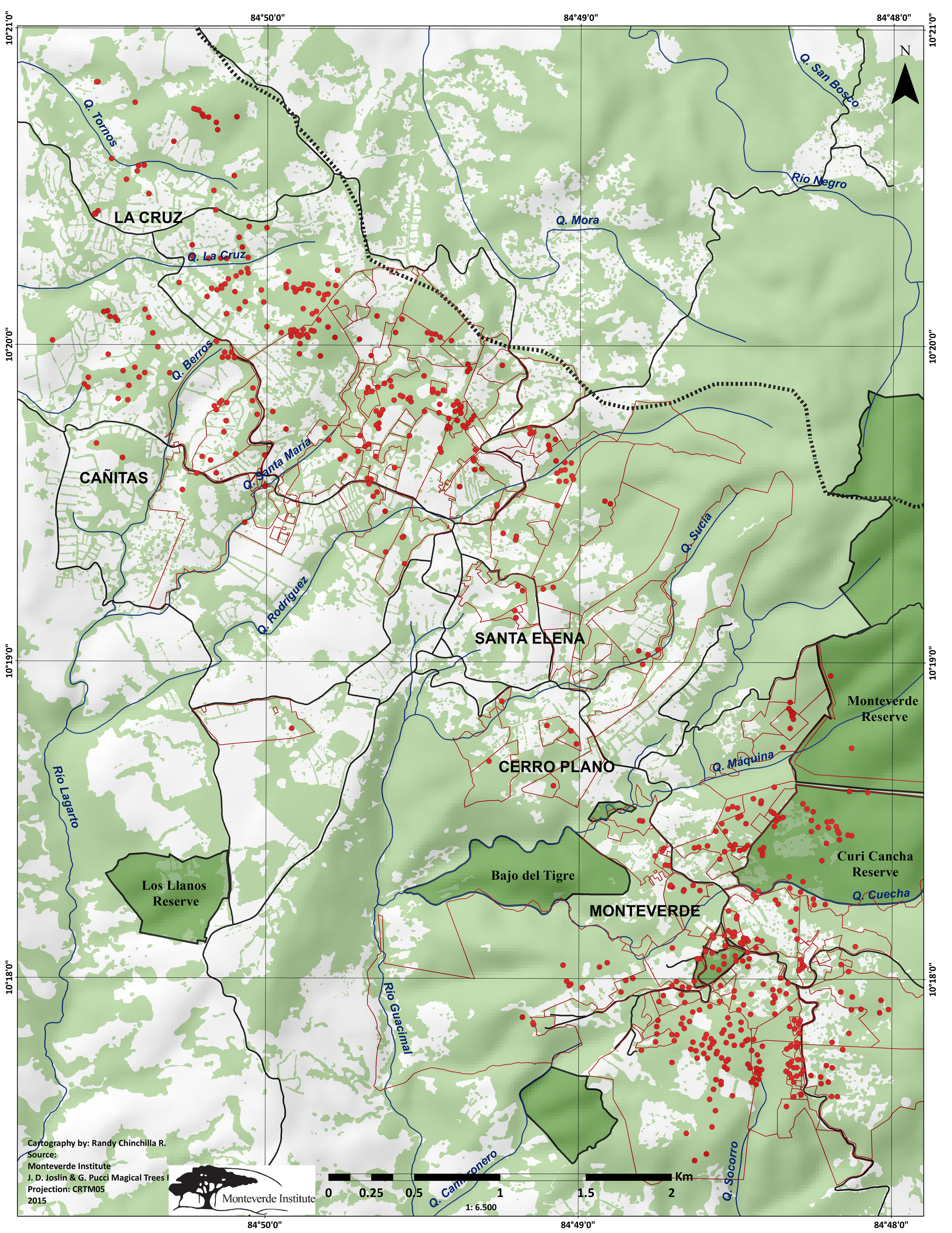 The red dots mark the location of individual trees and the red lines are property lines. (Click to enlarge).
