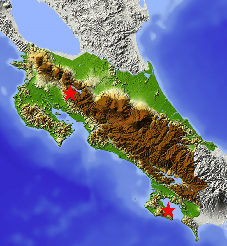 Places where I examined and collected Billia in Costa Rica. Upper star - Monteverde. Lower star, Puerta Jimenez, Osa.